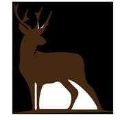 St-Cyrus-Deer-Image